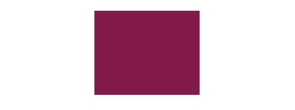 logo-client-schindler_carrefour